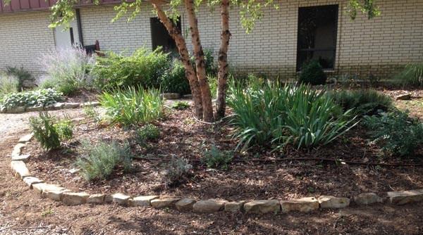Berryville Library Garden – Carroll County Arkansas Master Gardeners